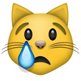Crying cat emoji