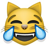 Launging cat emoji