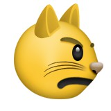 Angry cat emoji