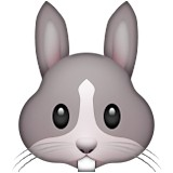 Rabbit face emoji