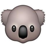 Koala Bear emoji