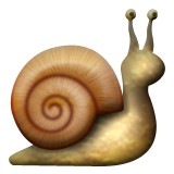 Snail with shell emoji