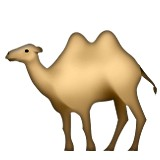 Camel with two humps emoji