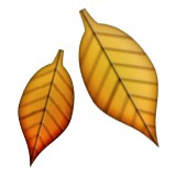 Fall leaves emoji
