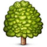Tree emoji