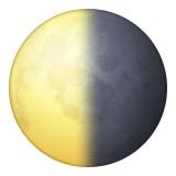 Waning quarter moon emoji