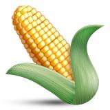 Corn on the cob emoji