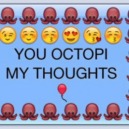 octopi my thoughts